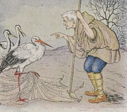 The farmer and the stork 1