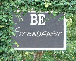 Be Moderate and Steadfast 2