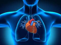 Ten Sicknesses of The Heart 2