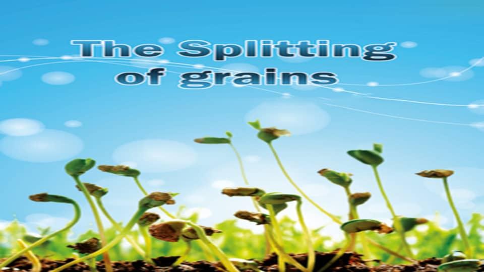 The Splitting of grains 1