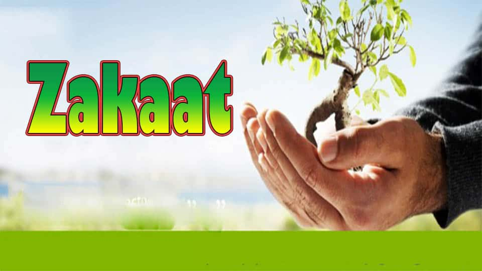 Zakaat is obligatory every lunar year 1