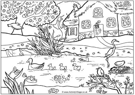 spring_pond_colouring_page_460